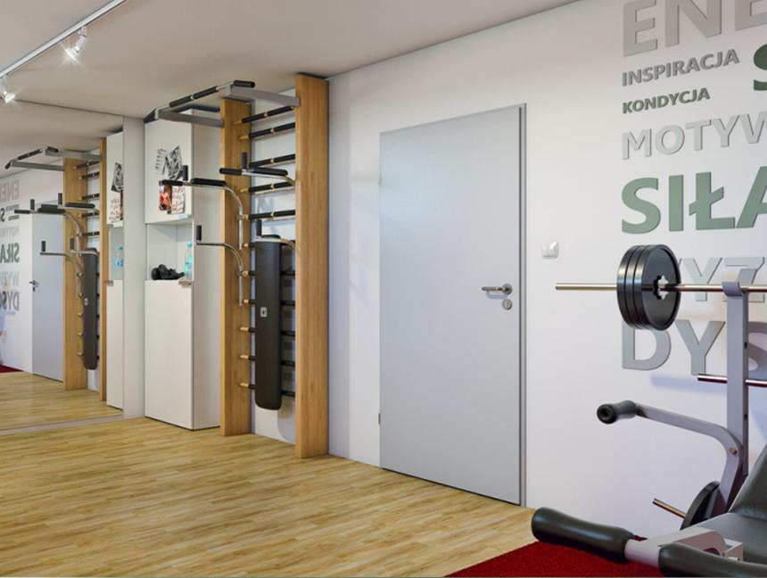 Kovové Basic (dveře + zárubně)